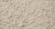 リシン(砂壁状)